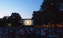 Wiesbaden Kino Programm