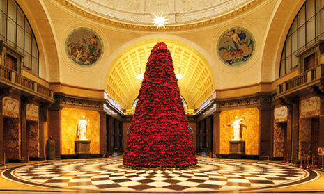 The Christmas tree in the Kurhaus